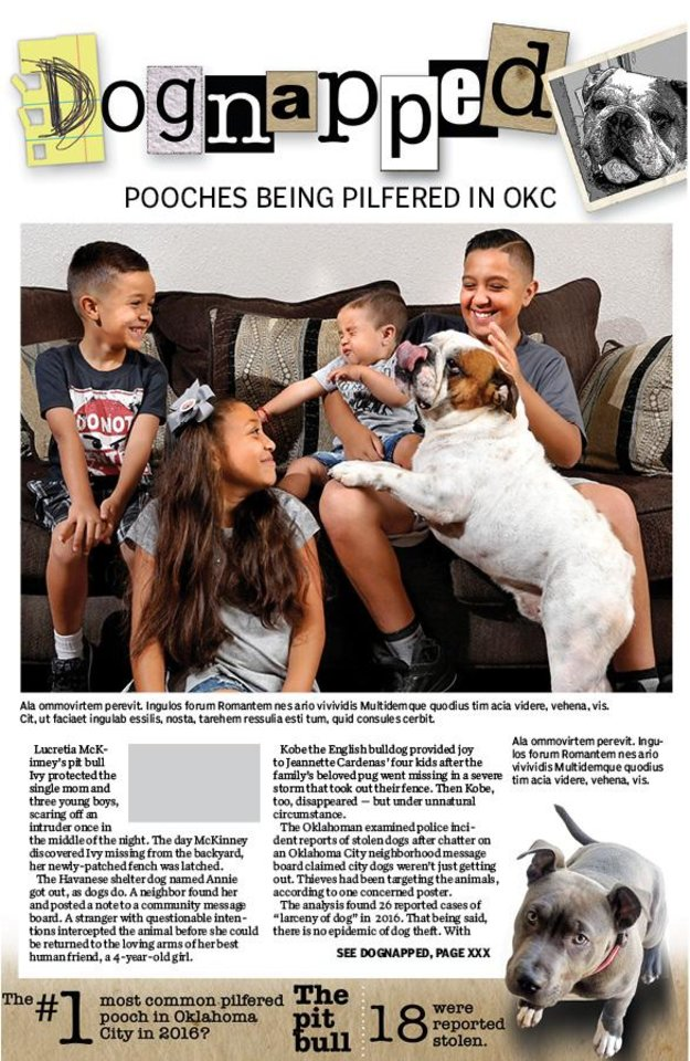 Pilfered pooches  Dogs go missing in OKC