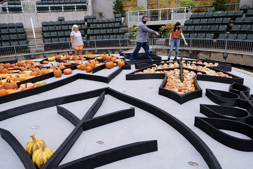 Photo - Local artist Nick Bayer gets help building a giant pumpkin mural on the Water Stage for the Myriad Botanical Gardens' Great Pumpkin Patch Friday, October 9, 2020 [Doug Hoke/The Oklahoman]