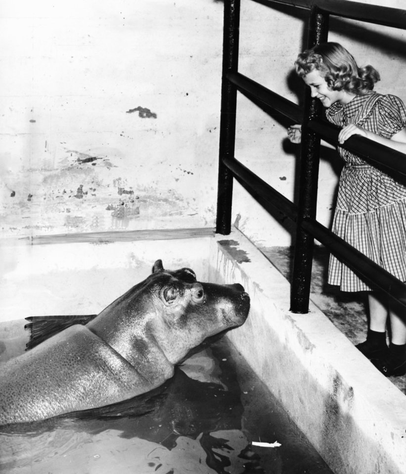 'Hippo' was a splash in singer's life