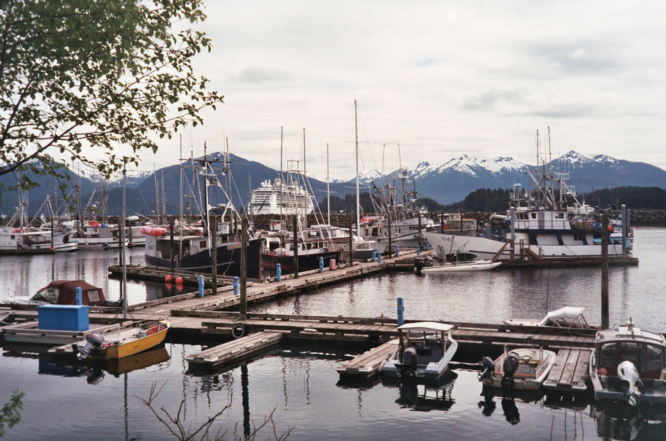 Photo - A cruise ship lies anchored near the marina in Sitka, Alaska. Photo courtesy of Sharon Whitley Larsen.