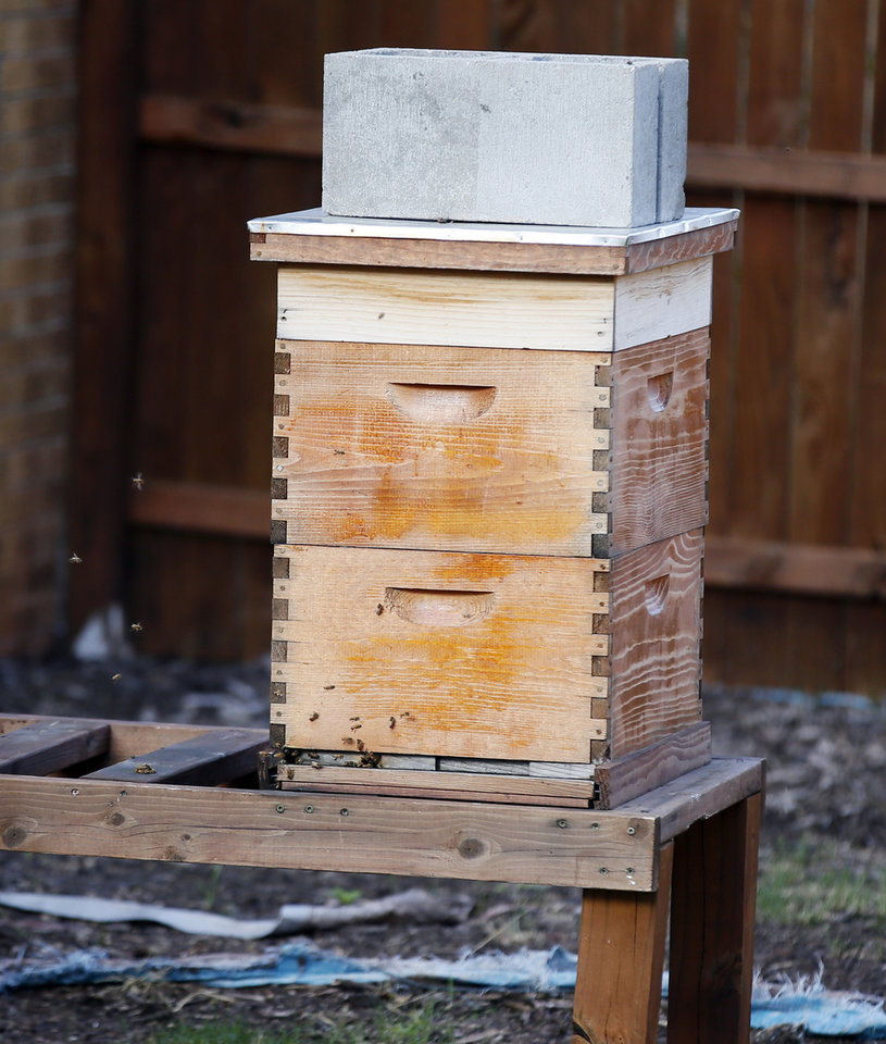 Photo - A beehive at FAME Academy, an alternative school in Comanche Public Schools, in Meridian, Okla., Wednesday, Oct. 3, 2018. Photo by Nate Billings, The Oklahoman