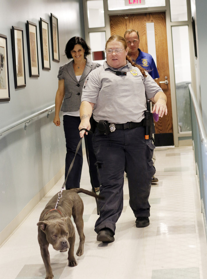 Abused dog finds new home with Norman man - Article Photos