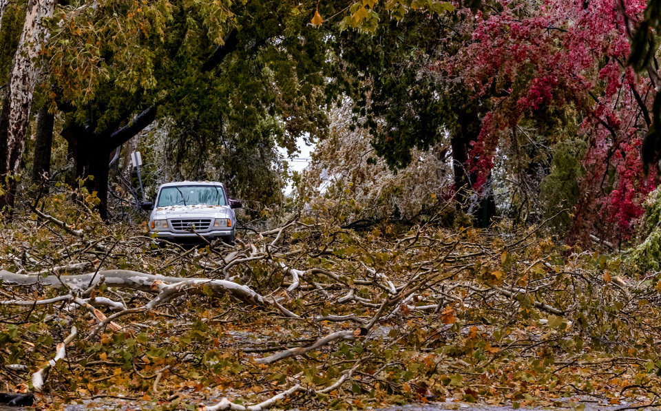 Photo - Broken tree limbs cover the road on NW 14th St. in Oklahoma City, Okla. on Tuesday, Oct. 27, 2020, after a winter blast covered the state with ice. [Chris Landsberger/The Oklahoman]