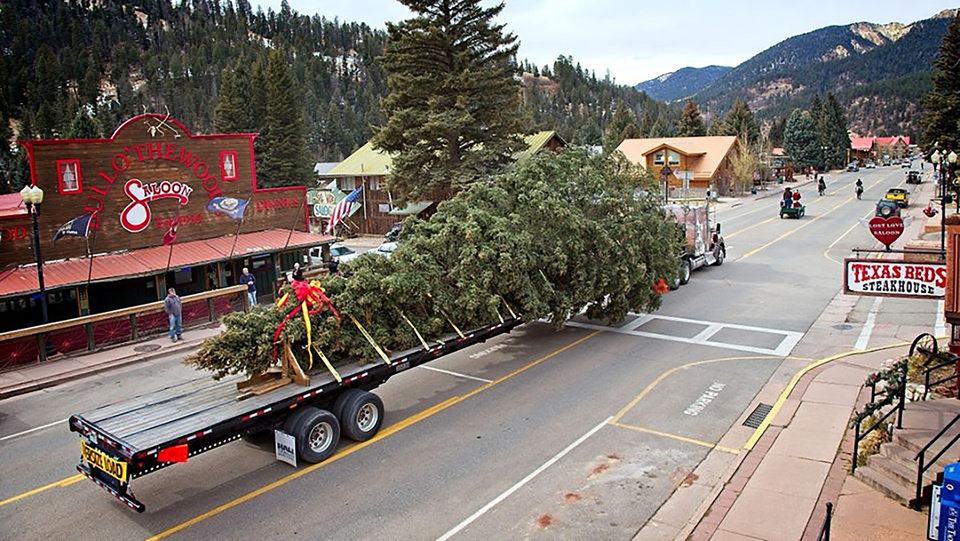 Photo - The tree, beginning its cross -country journey. TODD MICHAEL, RED RIVER MINER
