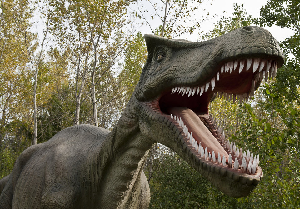 Photo -  A full-scale animatronic Baryonyx roars at Field Station: Dinosaurs in Derby, Kansas. The new family-friendly attraction just outside Wichita features more than 40 animatronic dinosaurs. [Photo provided]