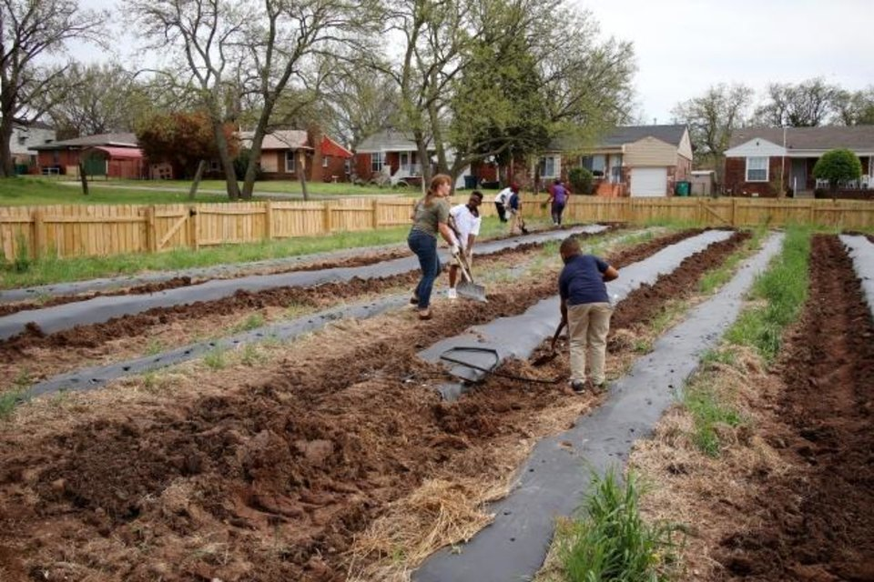 Photo -  People garden during a recent community garden workday at Restore OKC's urban farm called Freedom Farms & Greenhouses in northeast Oklahoma City. [Doug Hoke/The Oklahoman]