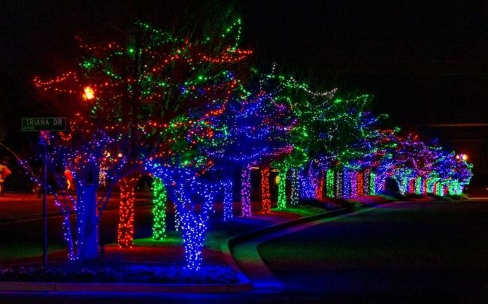 Photo -  Christmas lights decorate trees in Talavera addition. P.B. Odom III developed the addition, near SW 168 and S Santa Fe Avenue, and the trees came from his  farm at 3800 SW 134. [CHRIS LANDSBERGER/THE OKLAHOMAN]