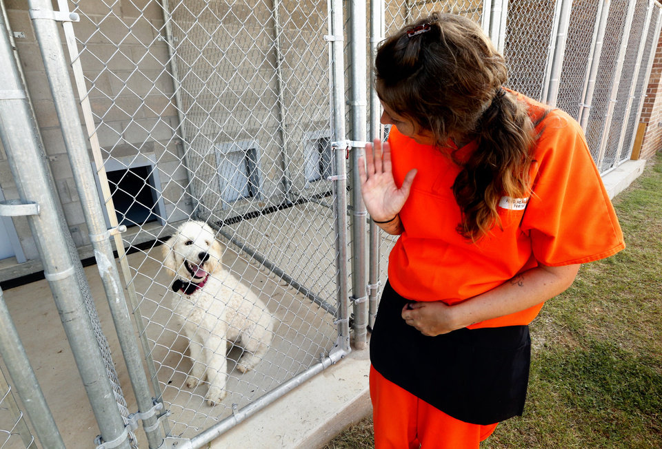 Photo -  Heather Hood waves at her dog in training, Boomer, inside the kennels at the dog training facility in McLoud. [Photo by Steve Sisney, The Oklahoman]