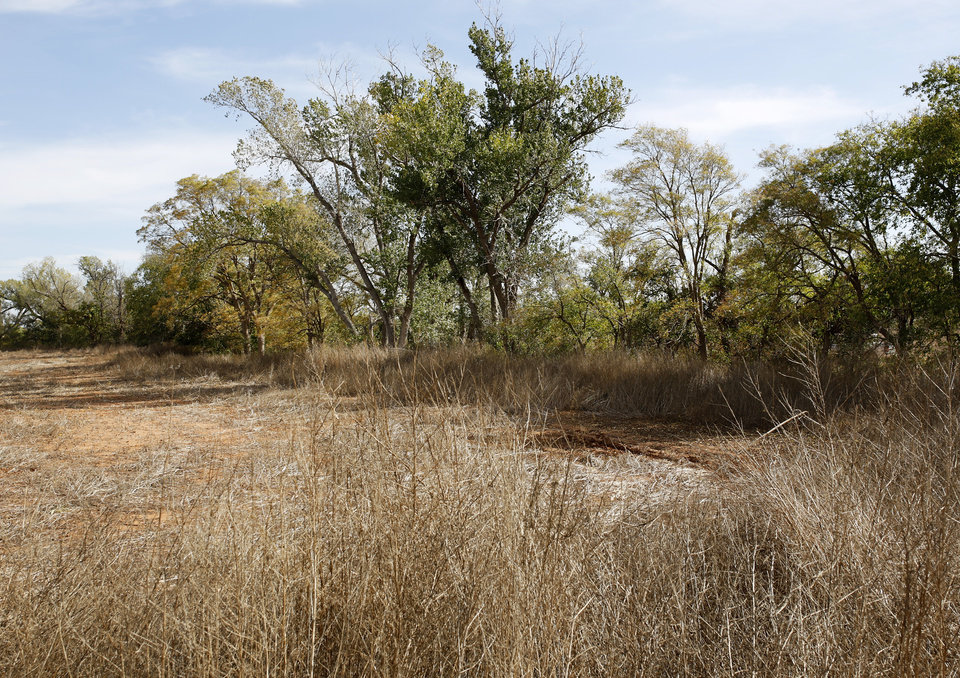 Photo -  The wooded area beside a field near the Washita River on Monday where Don Williamson and friends discovered the car used by double murder suspect Michael Dale Vance Jr., who was killed Sunday night in a gun battle with law officers. (Photo by Jim Beckel, The Oklahoman)