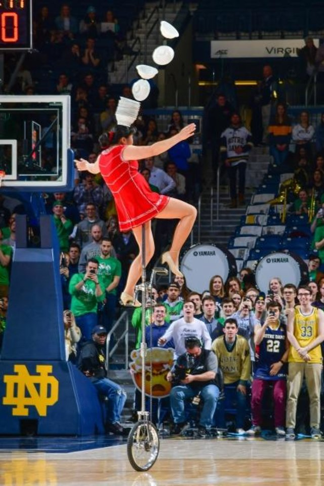 Photo -  Red Panda performs at halftime of the Syracuse-Notre Dame men's basketball game on Jan. 22 in South Bend, Ind. [Matt Cashore/USA TODAY Sports]