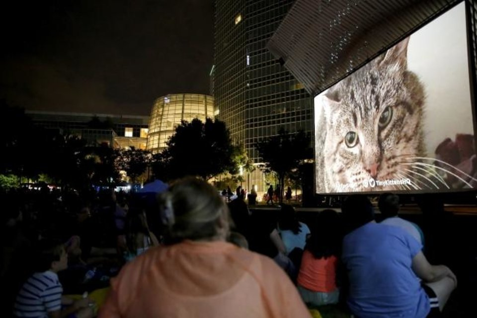 Photo -  People watch the compilation reel during last year's Cat Video Festival at the Myriad Botanical Gardens in Oklahoma City. [Sarah Phipps/The Oklahoman Archives]
