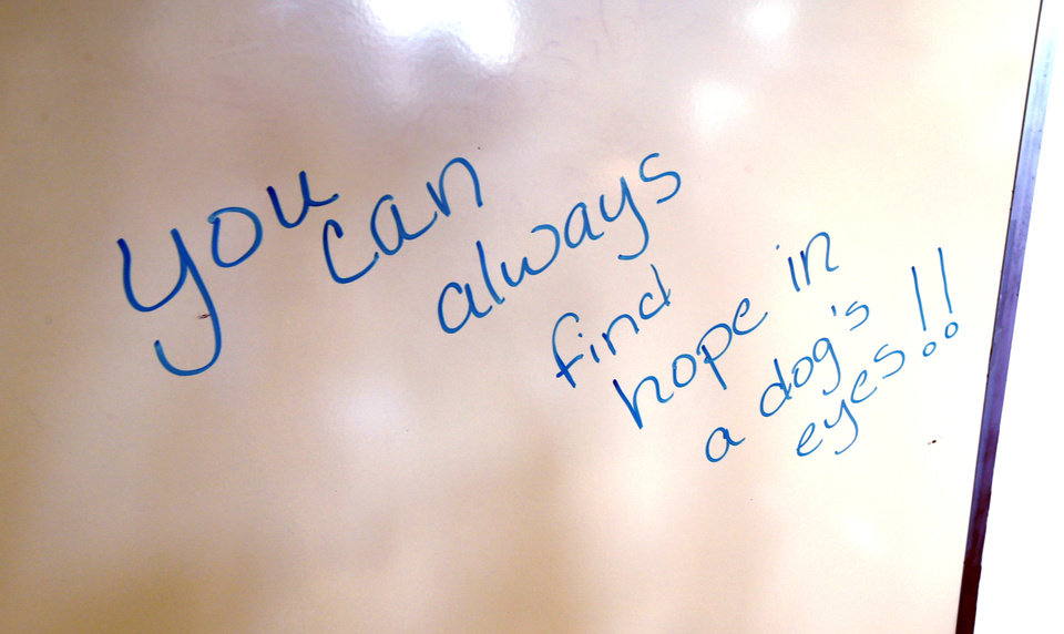 Photo -  A whiteboard in the classroom holds inspirational sayings at the dog training facility. [Photo by Steve Sisney, The Oklahoman]