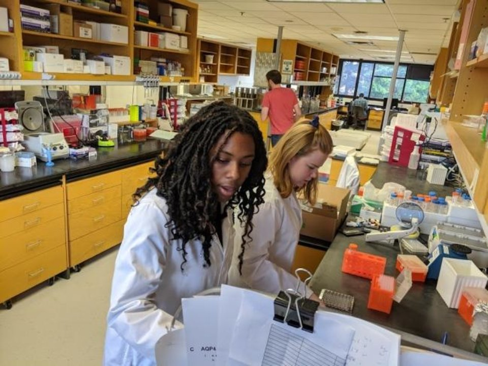 Photo -  MacKenzie Toliver and Emma Turner are both Fleming Scholars at the Oklahoma Medical Research Foundation this summer.      Photo provided