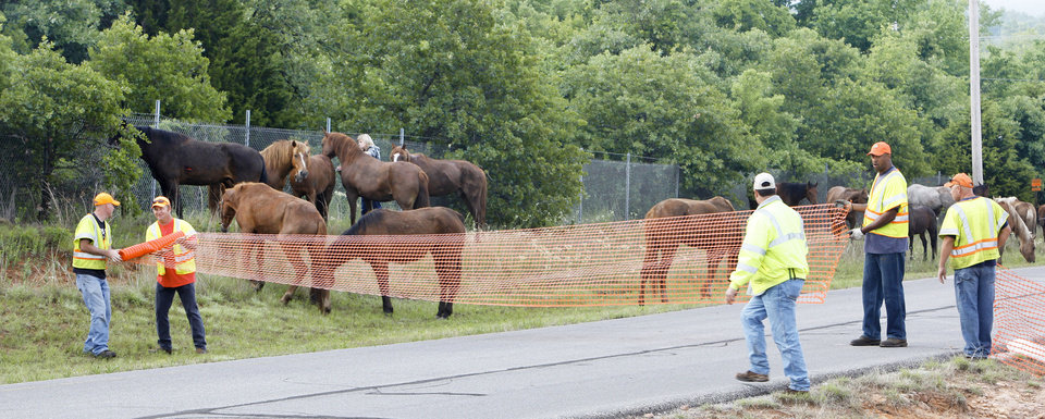 Photo - Workers set up a temporary corral on Sooner Road at NE 122 after the tractor-trailer hauling horses overturned. PHOTO BY PAUL B. SOUTHERLAND, THE OKLAHOMAN
