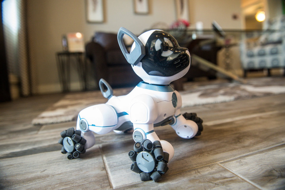Photo -  CHiP the Robotic Dog