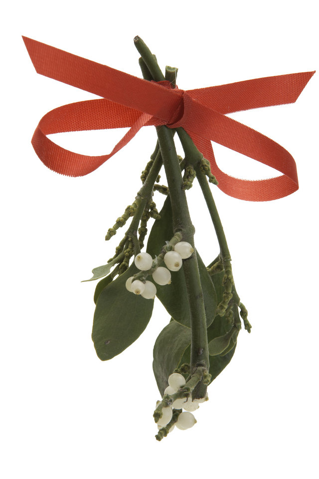 Photo -  Mistletoe is Oklahoma's state floral emblem, not our state flower. [THINKSTOCK PHOTO]