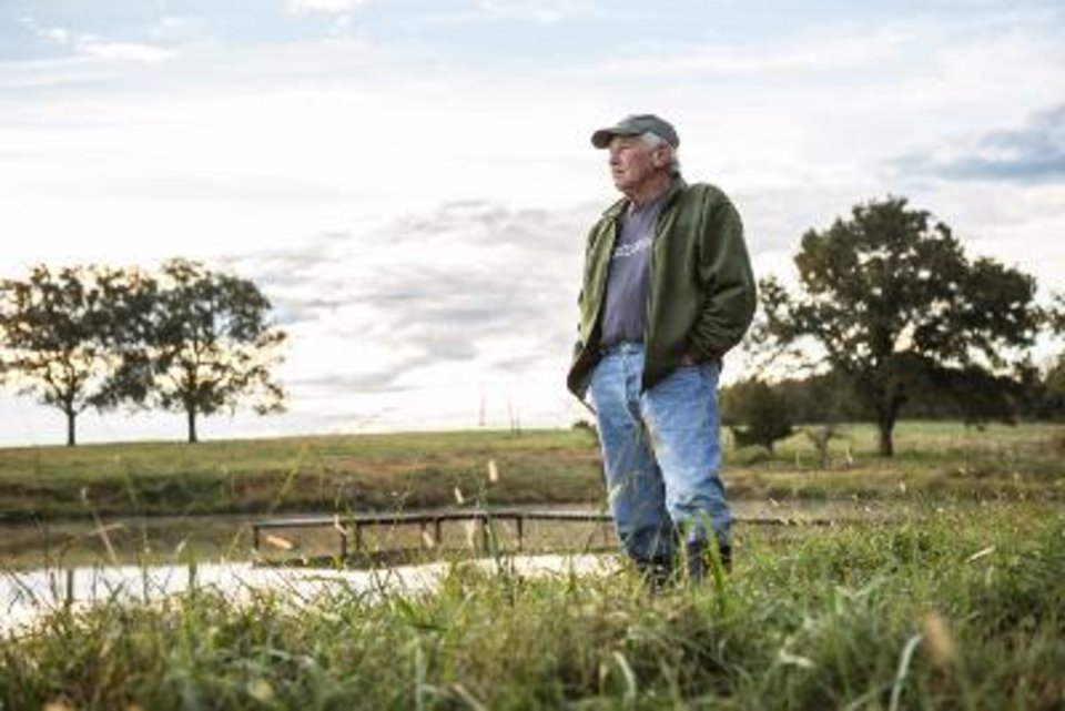 Photo - Don Mace surveys the land restored free by OERB. (Photo provided by OERB)