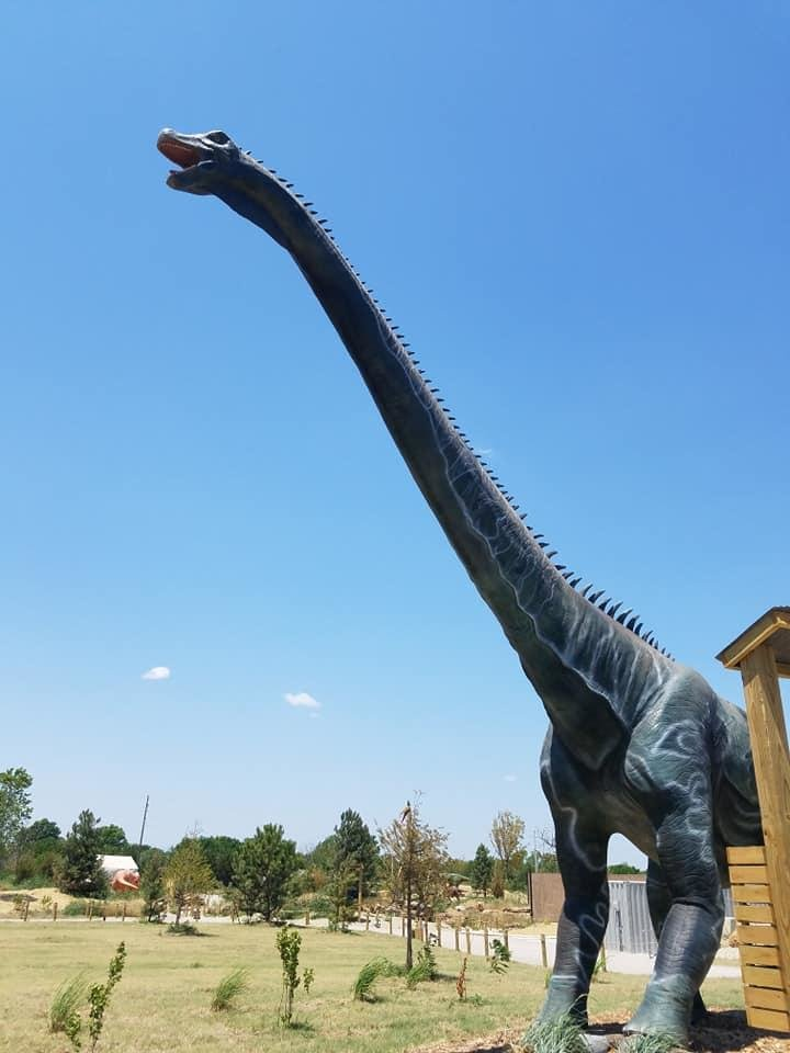 Photo - The robotic herd of more than 40 life-size dinosaurs at Field Station: Dinosaurs in Derby, Kansas, includes the 90-foot-long Alamosaurus, which is among the largest animatronic dinosaurs ever made. [Photo by Brandy McDonnell, The Oklahoman]