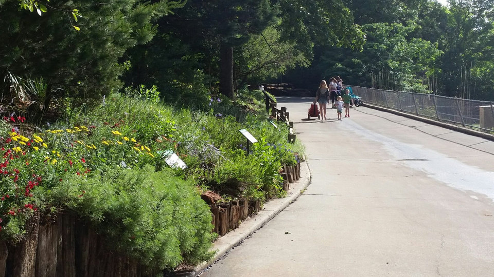 Drought tolerant garden opens at oklahoma city zoo news ok Garden city zoo
