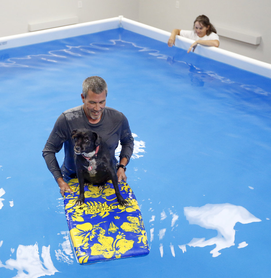 Photo -  Daniel Price uses a boogie board in a pool to help Lilly work on balance and strengthen core muscles as Debbie Price watches at The Water Bark Canine Aquatic Center.