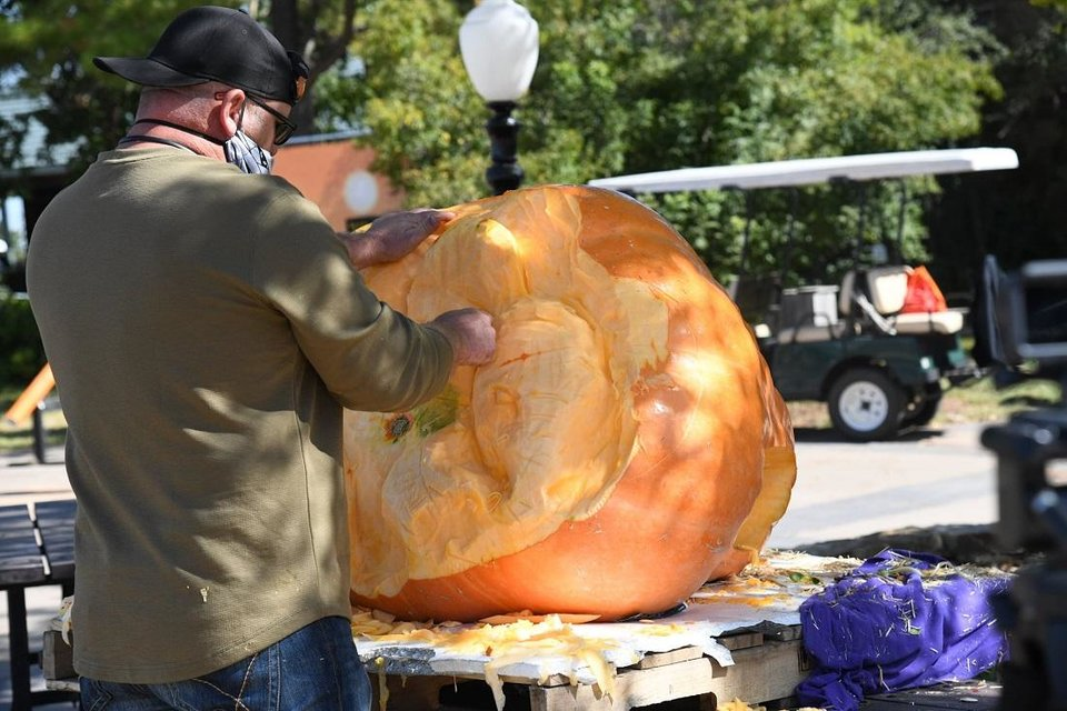 Photo - Wilson pumpkin carver Daniel Miller made an appearance Friday at the Oklahoma City Zoo's Chomp and Stomp event to carve a 3-D elephant into a 494-pound Oklahoma-grown pumpkin. [Photo provided]