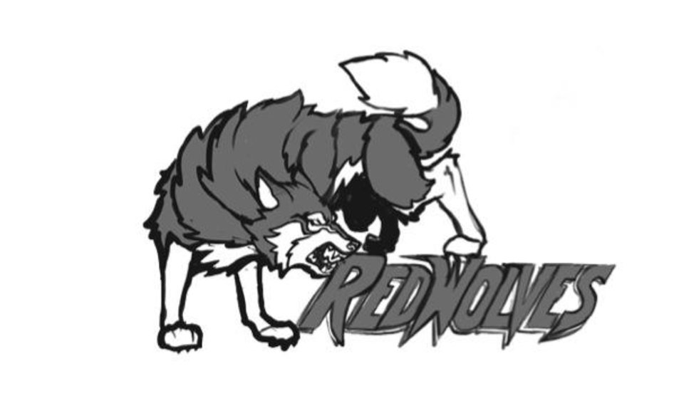 Photo -                                        Above:  Mascot candidate, Red Wolves