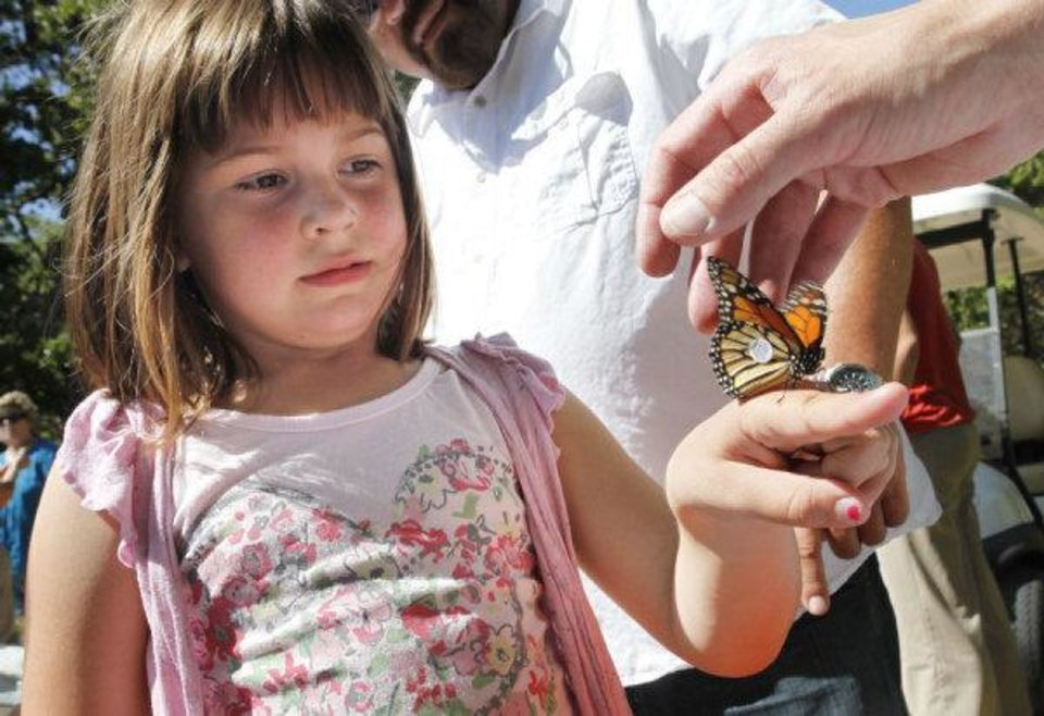 Photo - Naturalist Todd Bridgewater sets a tagged Monarch butterfly on the  hand of Jasmine Johnson