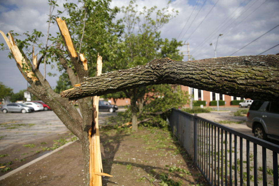 Photo - Tree damage is pictured in the Trinity Baptist Church parking lot after an apparent tornado moved through the area in Oklahoma City, Sunday, May 26, 2019.  [Sarah Phipps/The Oklahoman]
