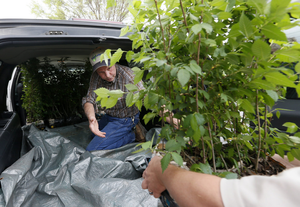 Photo -  Steve Bieberich helps to load seedlings from the Survivor Tree inside a Suburban at his nursery in Clinton. Bieberich has been growing these seedlings at Sunshine Nursery for the past year. The seedlings will be distributed at the Oklahoma City National Memorial's remembrance ceremony. [Photo by Nate Billings, The Oklahoman]