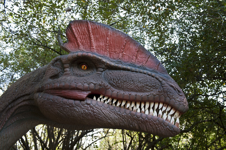 Photo -  A realistic animatronic Dilophosaurus is on view at Field Station: Dinosaurs in Derby, Kansas. The new family-friendly attraction just outside Wichita features more than 40 dinosaurs. [Photo provided]