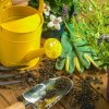 The therapeutic value of the garden in trying times