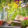 Learn more about gardening, or even become a Master Gardener