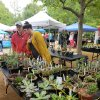 Oklahoma City Flower and Garden Festival Set for May 30