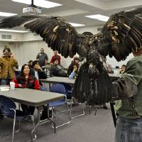 Photo - Above: Harley Coleman, an aviary assistant at the Grey Snow Eagle House, holds an eagle (also shown at left) Tuesday during a presentation for students in the Indian Education Program in the Putnam City School District. Photos by M. Tim Blake, for The Oklahoman