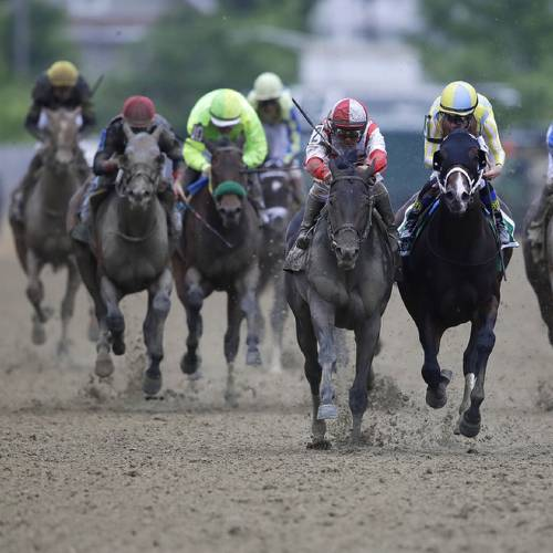The 142nd Preakness Stakes horse race