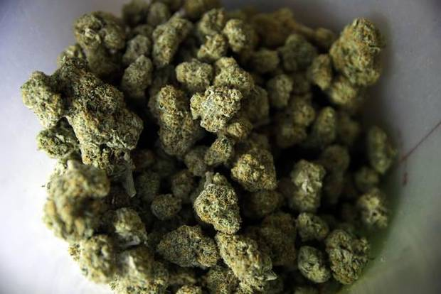 FILE - This June 27, 2017 file photo shows popcorn shaped marijuana nuggets in a plastic container at the Higher Path medical marijuana dispensary owned by Jerred Kiloh in Los Angeles. When U.S. Attorney General Jeff Sessions green-lighted federal prosecutors to pursue violators of federal marijuana laws, not only states that legalized recreational pot are at risk of a crackdown, but so is most of the rest of America. All but four states allow some form of medical marijuana, even Sessions' home state of Alabama. (AP Photo/Jae C. Hong, File)