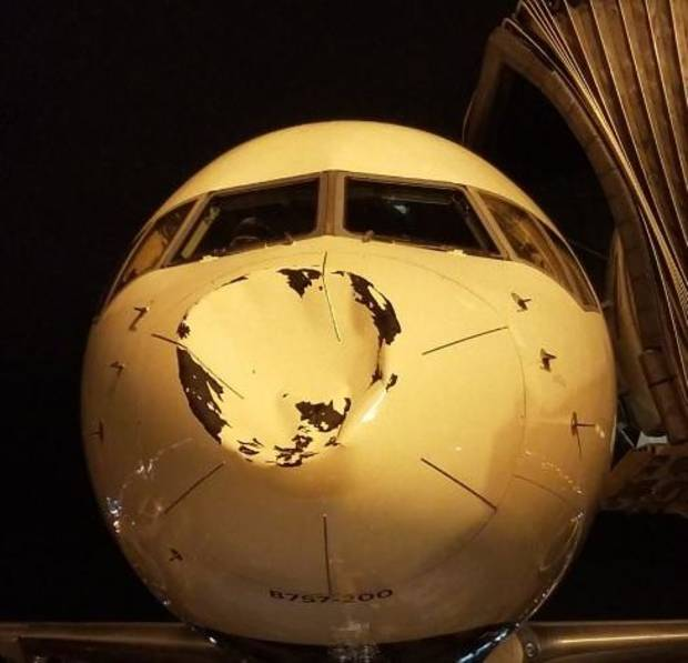 Oklahoma City Thunder's plane has its nose crushed by apparent bird collision