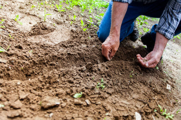 Moesel: It's time to get ready for spring planting