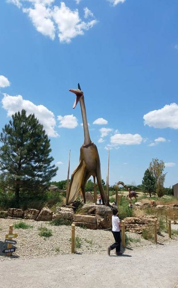 Gabriel McDonnell, 11-year-old son of Features Writer Brandy McDonnell, looks at a towering animatronic Quetzalcoatlus on view at the new Field Station: Dinosaurs attraction in Derby, Kansas. [Photo by Brandy McDonnell, The Oklahoman]