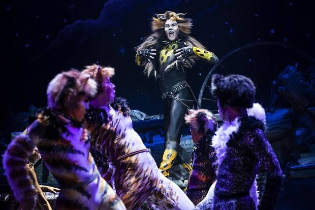 "McGee Maddox plays Rum Tum Tugger in the national touring production of ""Cats."" [Photo by Matthew Murphy]"