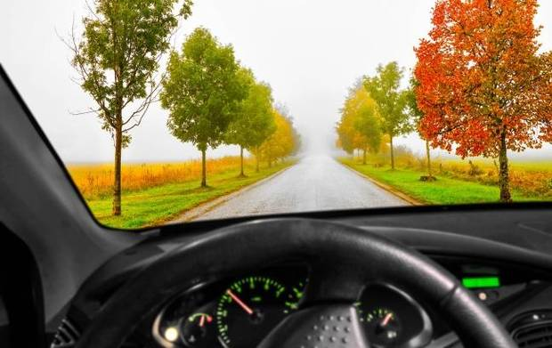 Savvy Senior: When should dementia patients stop driving?
