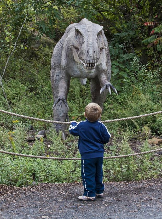 A child looks at a life-sized, realistic Dryptosaurus at Field Station: Dinosaurs in Derby, Kansas, a suburb of Wichita. The new family-friendly attraction features more than 40 dinosaurs, along with a full slate of performances and activities. [Photo provided]