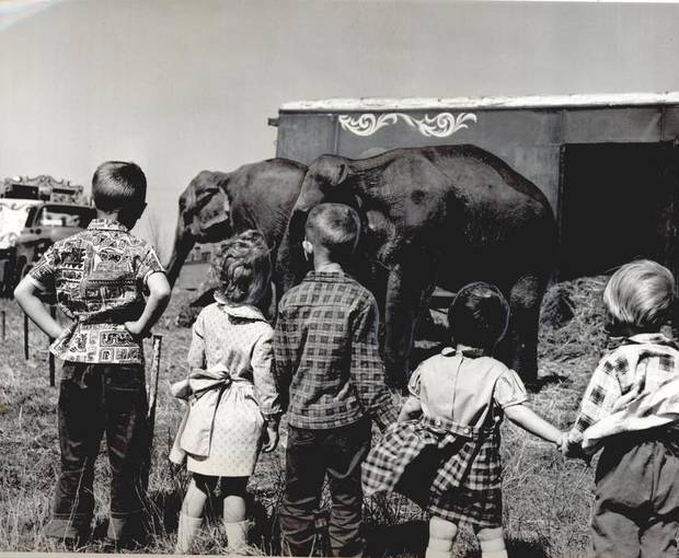 April 13, 1961: Circus Elephants from the Ringling Bros. and Barnum & Bailey Circus herd are viewed by children who turned out to see the show unload from a 16-car train. [Photo by Cliff King, The Oklahoman Archives]