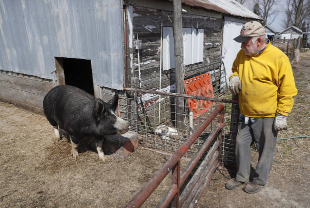 US pork farmers panic as virus ruins hopes for great year