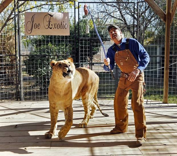 Joe Exotic works with Boco, the male Li-Liger at Greater Wynnewood Exotic Animal Park on Thursday, Dec. 1, 2016 in Wynnewood, Okla. [The Oklahoman Archives]
