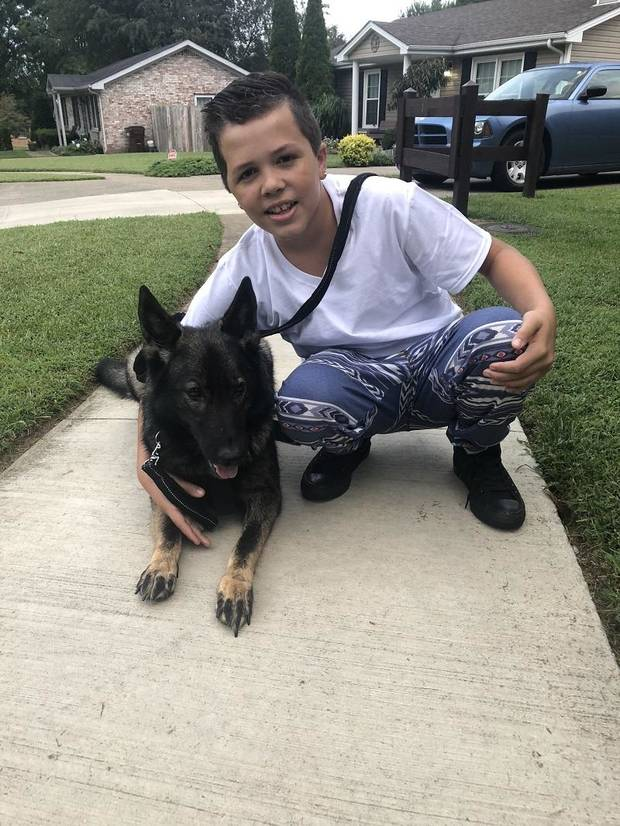 Following more than a million votes by the American public and an expert panel of celebrity animal lovers and dog experts, Alice, a five-year-old German Shepherd from Nicholasville, Kentucky, captured the top title of American Hero Dog at the 2019 American Humane Hero Dog Awards. Alice helps alert teenager Antonio, who was shot in the head in a random act of violence, to oncoming seizures and assists him with balance, and enables him to go to school and other public places. [Photo provided]