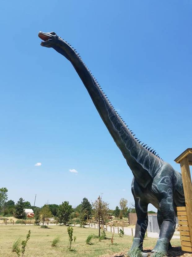 The robotic herd of more than 40 life-size dinosaurs at Field Station: Dinosaurs in Derby, Kansas, includes the 90-foot-long Alamosaurus, which is among the largest animatronic dinosaurs ever made. [Photo by Brandy McDonnell, The Oklahoman]