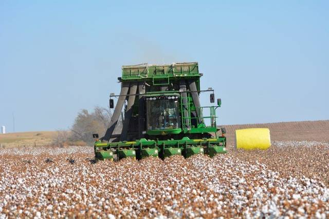 A picker works a cotton field in southwest Oklahoma. Today's pickers create round bales of cotton, wrapped in plastic. The plastic helps protect the harvest until the cotton can be ginned. [Photo provided]